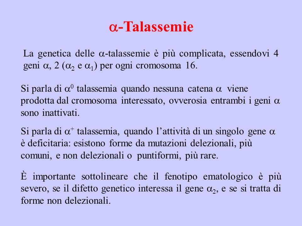 -Talassemie La genetica delle  -talassemie è più complicata, essendovi 4 geni , 2 (    e   ) per ogni cromosoma 16. È importante sottolinear