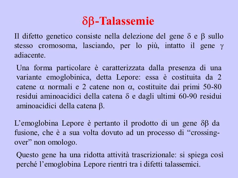  -Talassemie Il difetto genetico consiste nella delezione del gene  e  sullo stesso cromosoma, lasciando, per lo più, intatto il gene  adiacente.