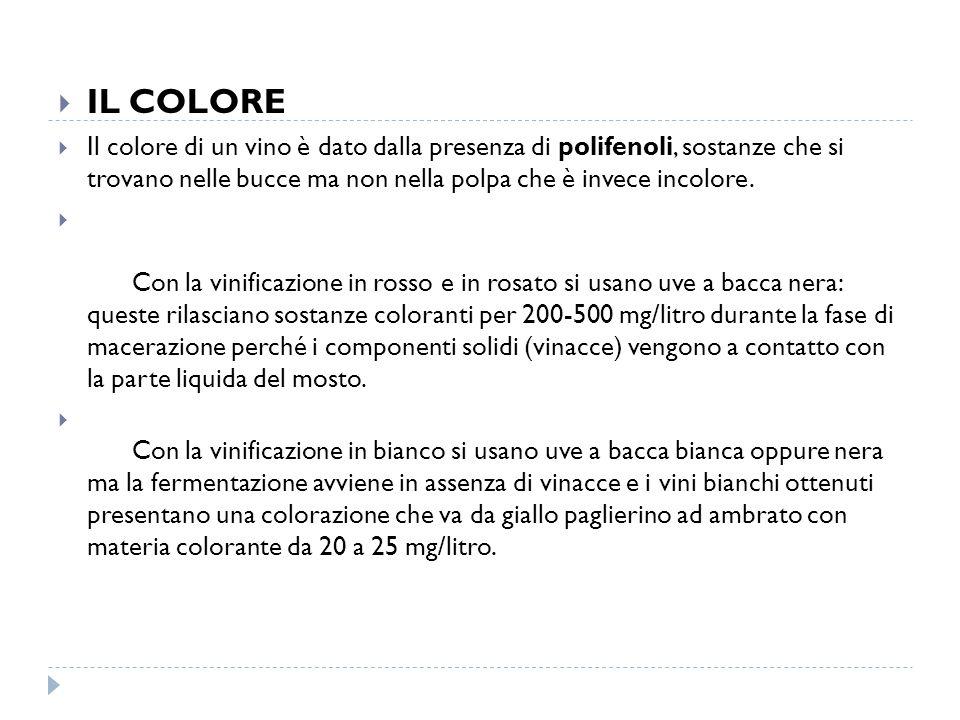  IL COLORE  Il colore di un vino è dato dalla presenza di polifenoli, sostanze che si trovano nelle bucce ma non nella polpa che è invece incolore.