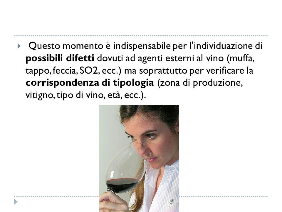  Questo momento è indispensabile per l'individuazione di possibili difetti dovuti ad agenti esterni al vino (muffa, tappo, feccia, SO2, ecc.) ma sopr