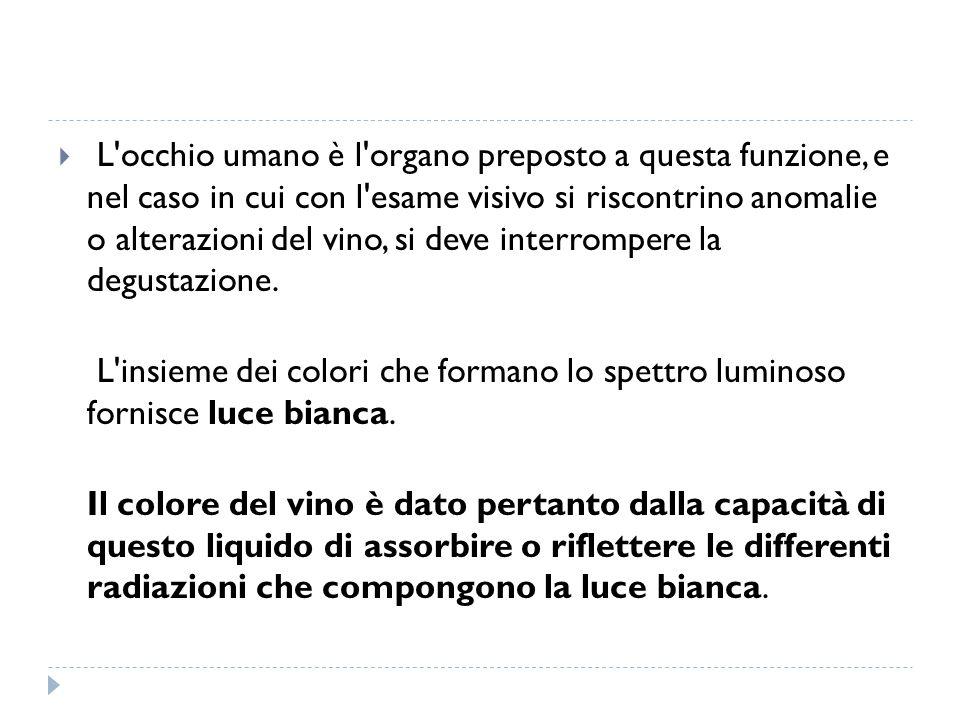  In base alla percezione di questo carattere il vino si può definire: MOLLE: minima presenza di componenti tannici, vino vecchio o alterato POCO TANNICO: leggerissima sensazione astringente/tannica, normalmente sono vini novelli, chiaretti o rossi invecchiati ABBASTANZA TANNICO: sufficiente sensazione astringente/tannica, vini rossi di media/grande struttura TANNICO: netta sensazione astringente/tannica, vini rossi giovani ASTRINGENTE: predominante sensazione astringente/tannica, con mancata secrezione salivare.