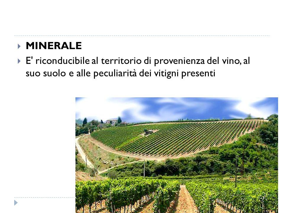  MINERALE  E' riconducibile al territorio di provenienza del vino, al suo suolo e alle peculiarità dei vitigni presenti