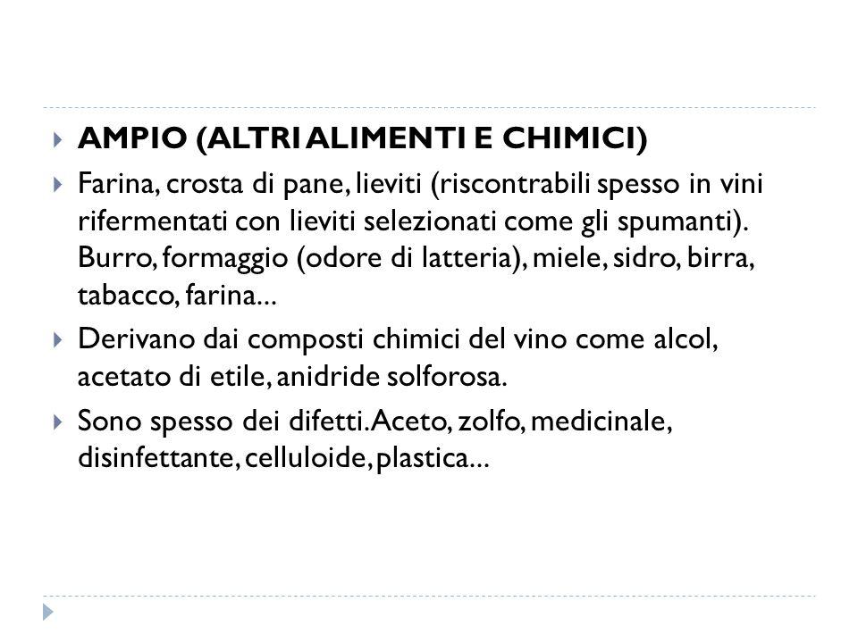  AMPIO (ALTRI ALIMENTI E CHIMICI)  Farina, crosta di pane, lieviti (riscontrabili spesso in vini rifermentati con lieviti selezionati come gli spumanti).