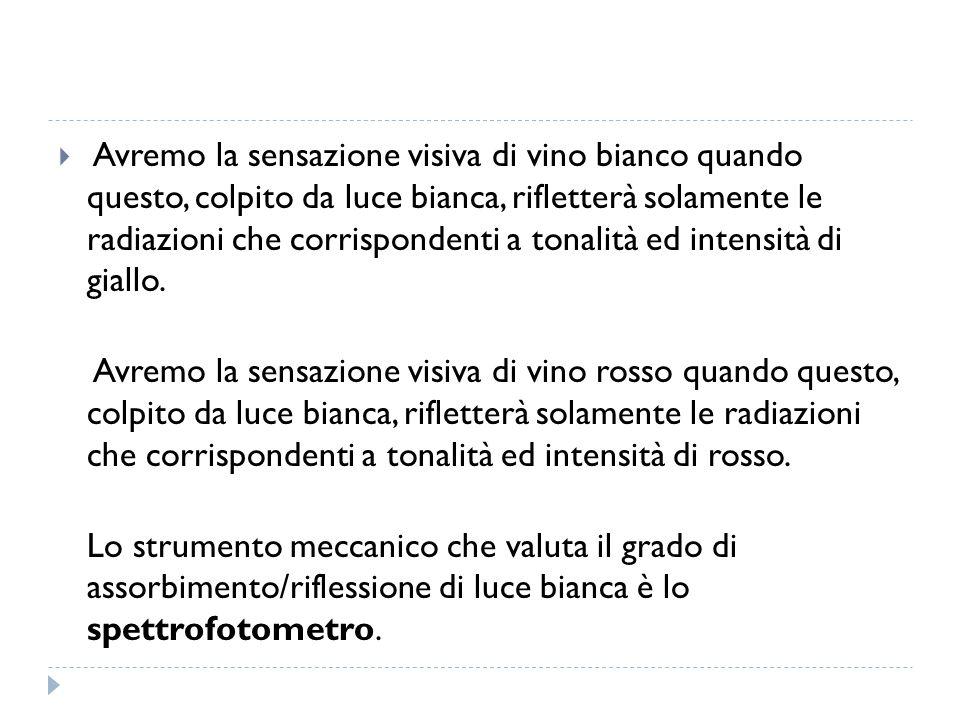  SALI MINERALI La sapidità di un vino è una microsensazione che mitiga l acidità, la quale al contrario è una macrosensazione.