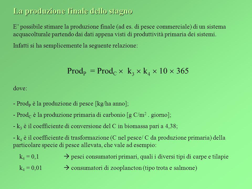 La produzione finale dello stagno E' possibile stimare la produzione finale (ad es.