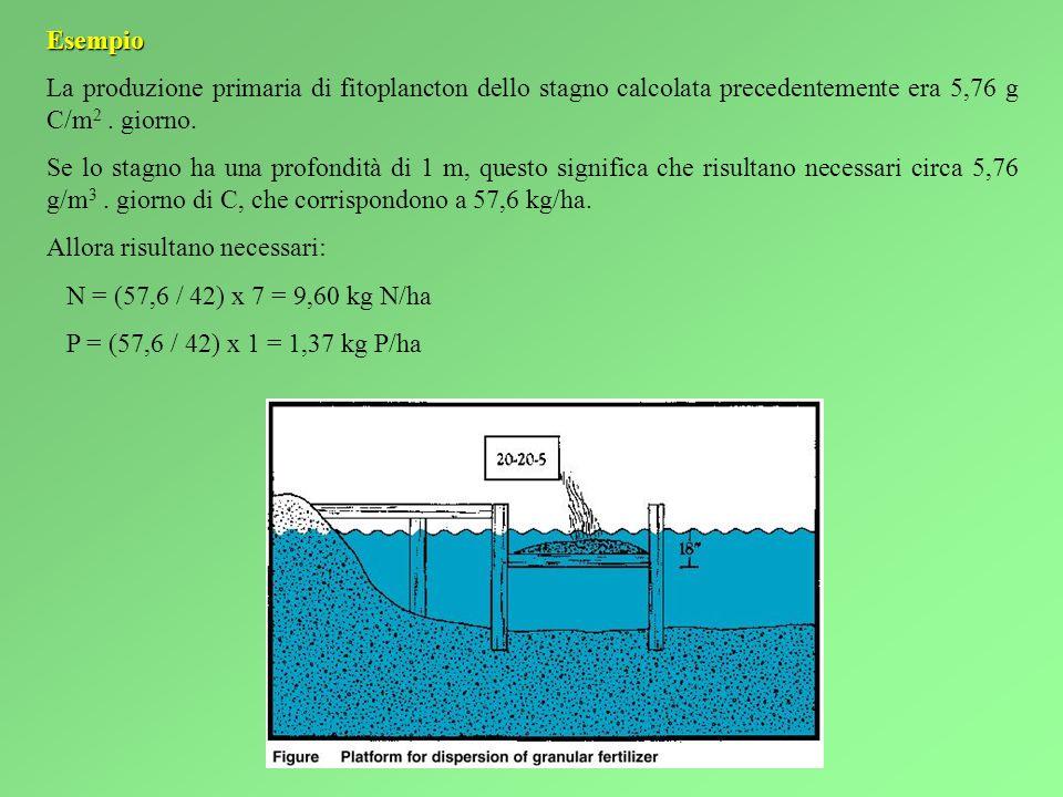 Esempio La produzione primaria di fitoplancton dello stagno calcolata precedentemente era 5,76 g C/m 2.
