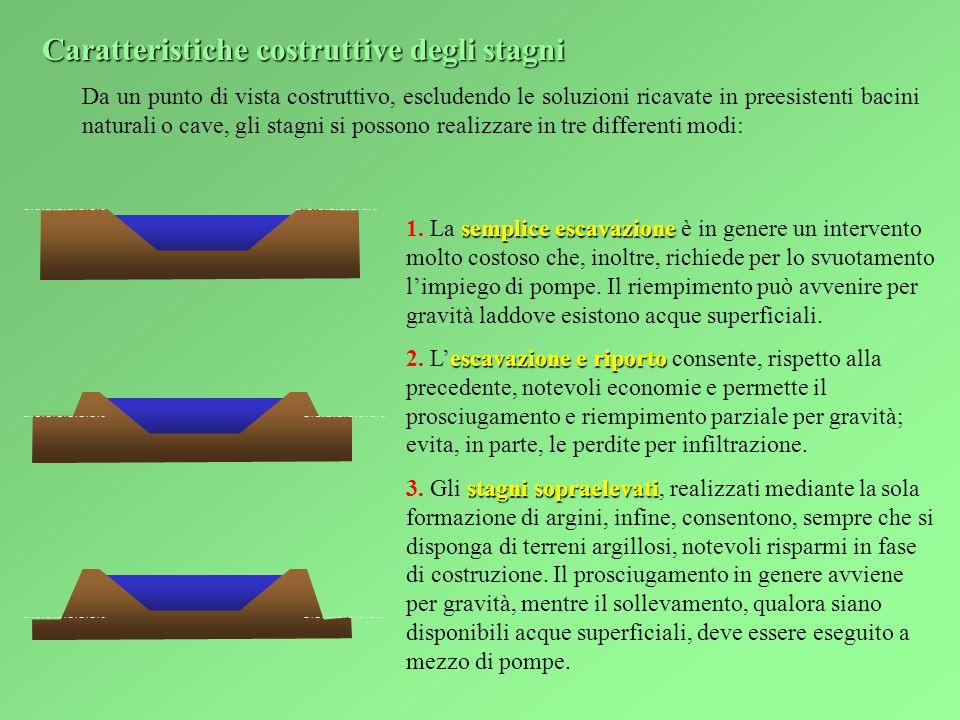 Da un punto di vista costruttivo, escludendo le soluzioni ricavate in preesistenti bacini naturali o cave, gli stagni si possono realizzare in tre differenti modi: semplice escavazione 1.
