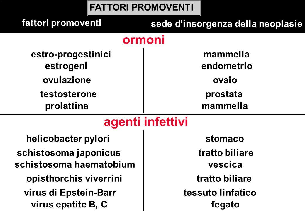 ormoni FATTORI PROMOVENTI fattori promoventi sede d'insorgenza della neoplasie estrogeni endometrio estro-progestinici mammella ovulazione ovaio testo