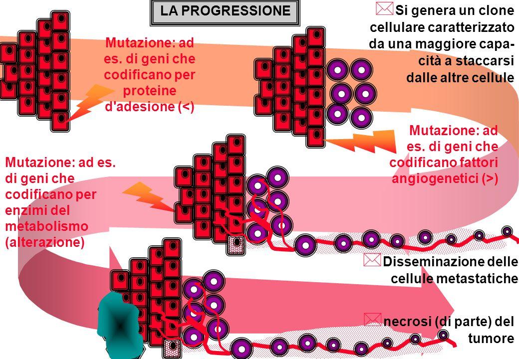 LA PROGRESSIONE Mutazione: ad es. di geni che codificano per proteine d'adesione (<) Mutazione: ad es. di geni che codificano fattori angiogenetici (>