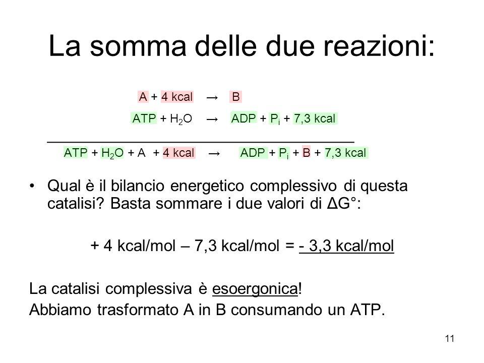 11 La somma delle due reazioni: A + 4 kcal → B ATP + H 2 O → ADP + P i + 7,3 kcal __________________________________ ATP + H 2 O + A + 4 kcal → ADP +