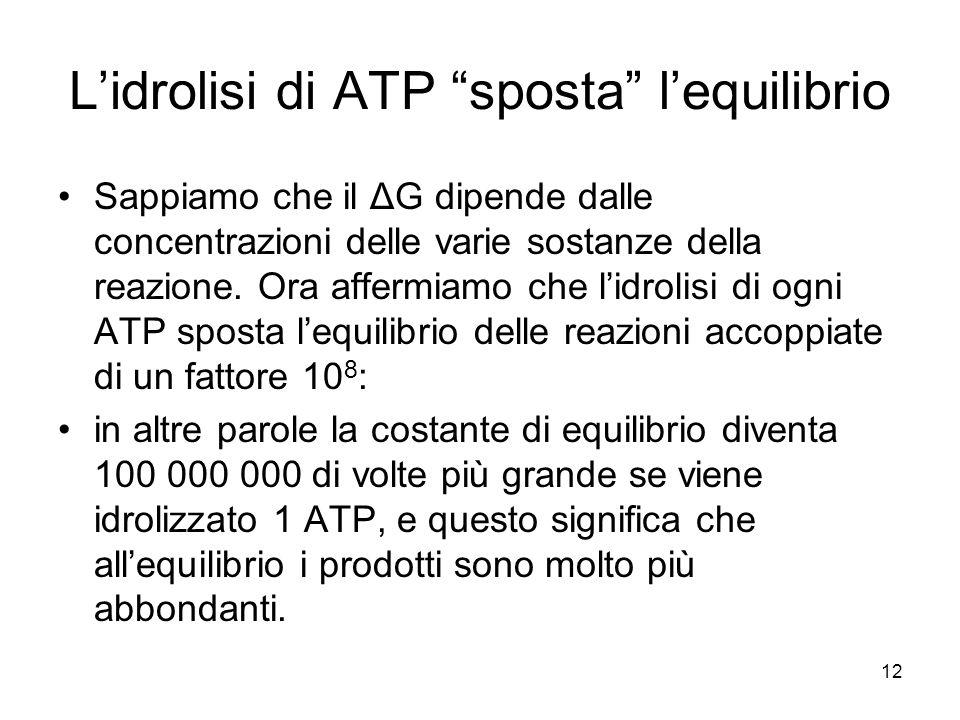 """12 L'idrolisi di ATP """"sposta"""" l'equilibrio Sappiamo che il ΔG dipende dalle concentrazioni delle varie sostanze della reazione. Ora affermiamo che l'i"""
