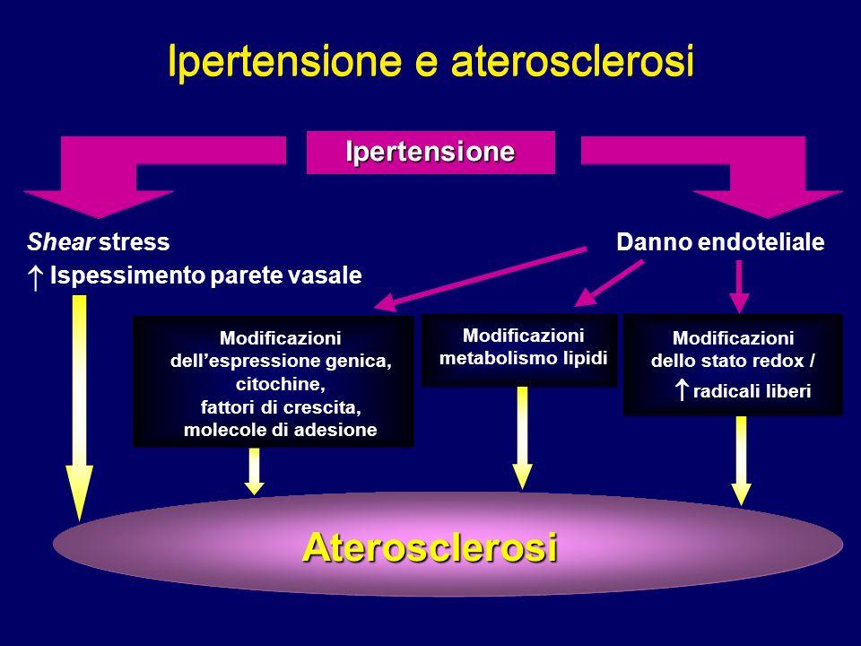 Ipertensione Aterosclerosi Shear stress  Ispessimento parete vasale Danno endoteliale Modificazioni metabolismo lipidi Modificazioni dello stato redo