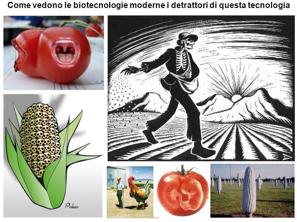 Come vedono le biotecnologie moderne i detrattori di questa tecnologia