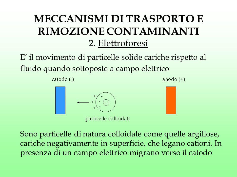 MECCANISMI DI TRASPORTO E RIMOZIONE CONTAMINANTI 2. Elettroforesi E' il movimento di particelle solide cariche rispetto al fluido quando sottoposte a