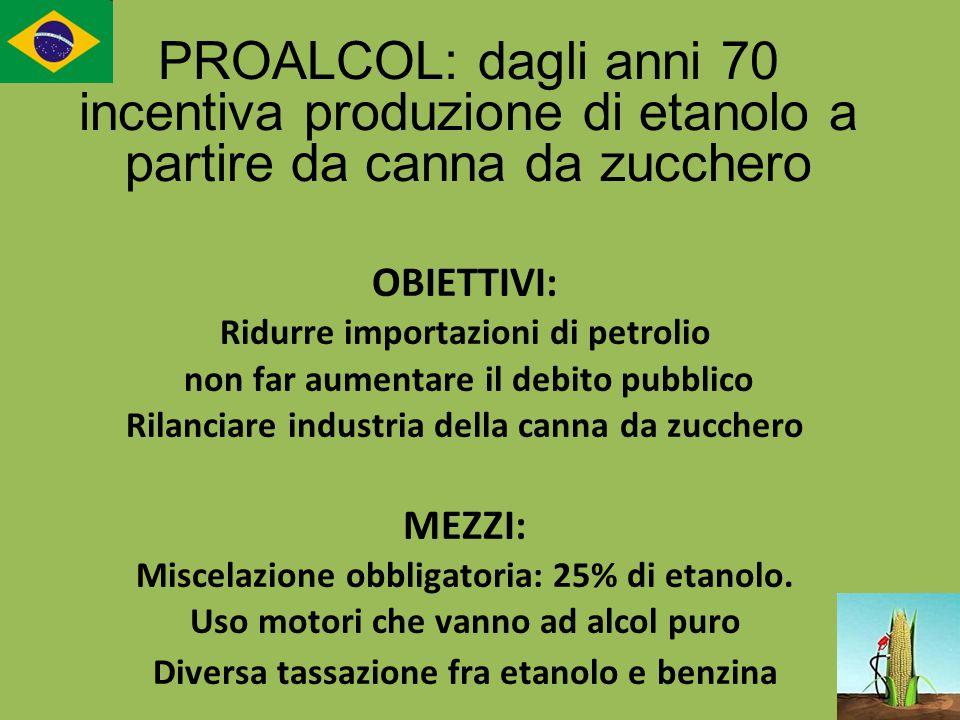 OBIETTIVI: Ridurre importazioni di petrolio non far aumentare il debito pubblico Rilanciare industria della canna da zucchero MEZZI: Miscelazione obbl
