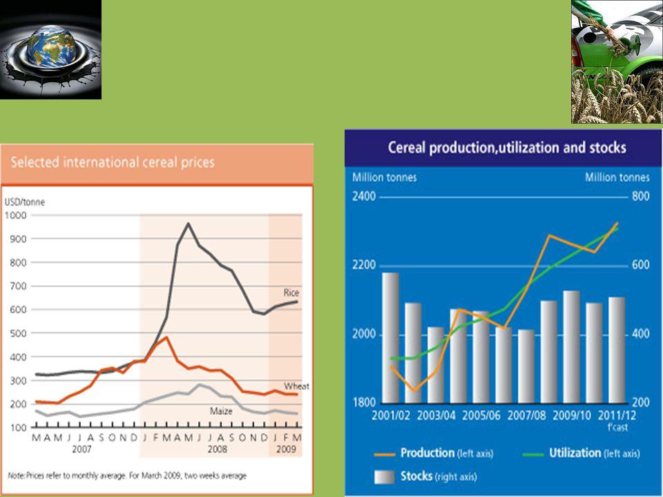 PNPB privilegia la diversificazione delle materie prime e non monocultura.