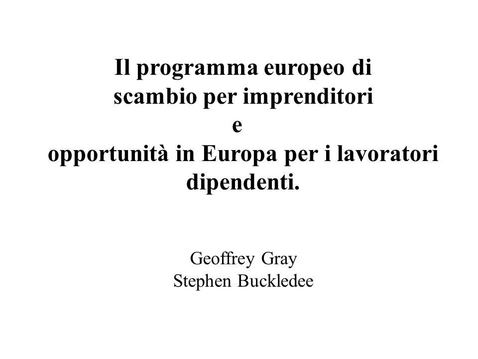 Il programma europeo di scambio per imprenditori e opportunità in Europa per i lavoratori dipendenti.