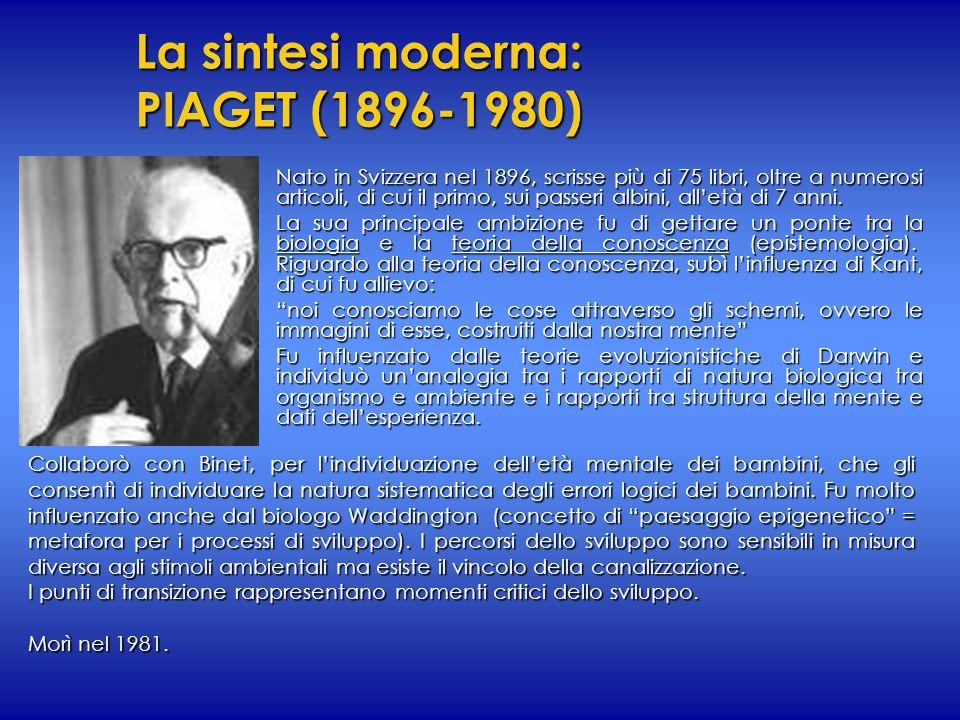 La sintesi moderna: PIAGET (1896-1980) Nato in Svizzera nel 1896, scrisse più di 75 libri, oltre a numerosi articoli, di cui il primo, sui passeri alb