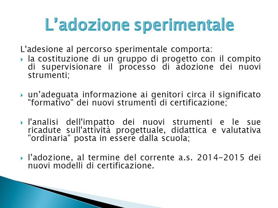 L'adesione al percorso sperimentale comporta:  la costituzione di un gruppo di progetto con il compito di supervisionare il processo di adozione dei