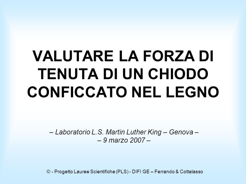 © - Progetto Lauree Scientifiche (PLS) - DIFI GE – Ferrando & Cottalasso VALUTARE LA FORZA DI TENUTA DI UN CHIODO CONFICCATO NEL LEGNO – Laboratorio L.S.