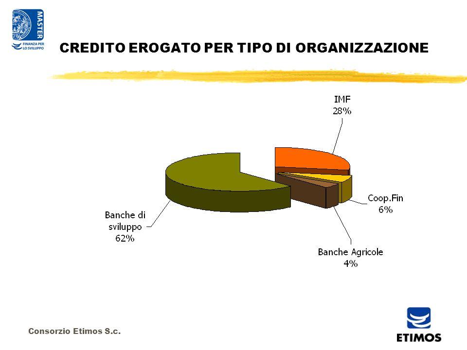 Consorzio Etimos S.c. CREDITO EROGATO PER TIPO DI ORGANIZZAZIONE