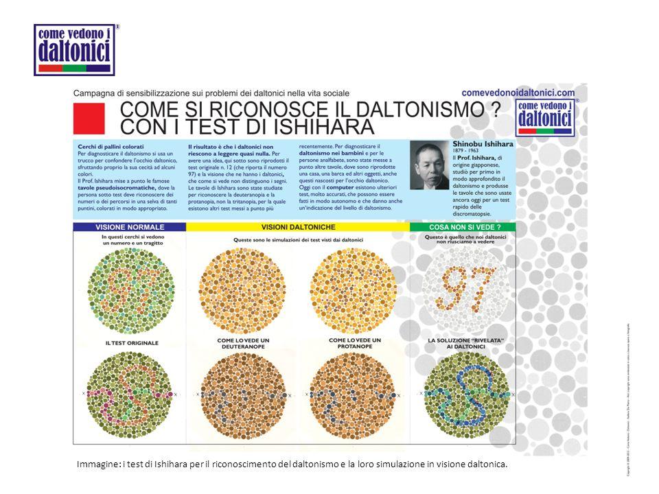 Immagine: i test di Ishihara per il riconoscimento del daltonismo e la loro simulazione in visione daltonica.