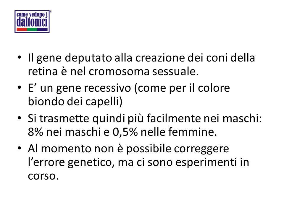 Il gene deputato alla creazione dei coni della retina è nel cromosoma sessuale. E' un gene recessivo (come per il colore biondo dei capelli) Si trasme