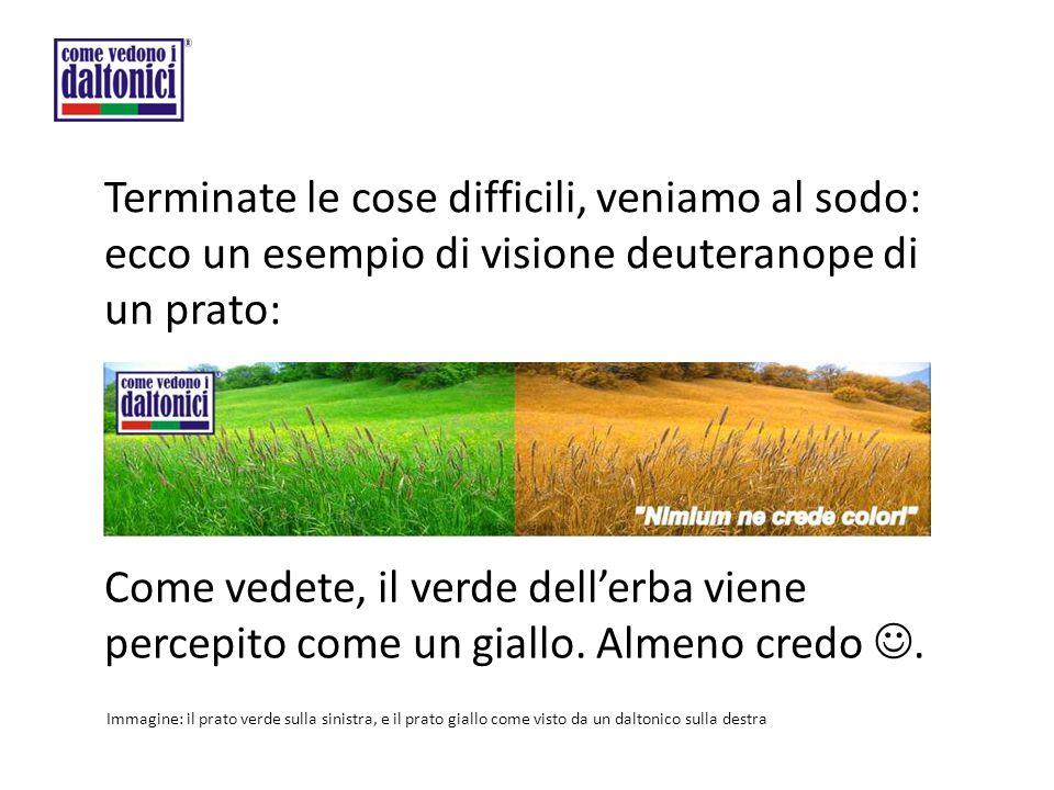 Terminate le cose difficili, veniamo al sodo: ecco un esempio di visione deuteranope di un prato: Come vedete, il verde dell'erba viene percepito come un giallo.