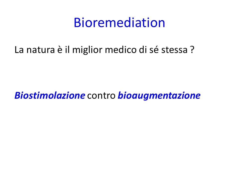 Bioremediation La natura è il miglior medico di sé stessa ? Biostimolazione contro bioaugmentazione