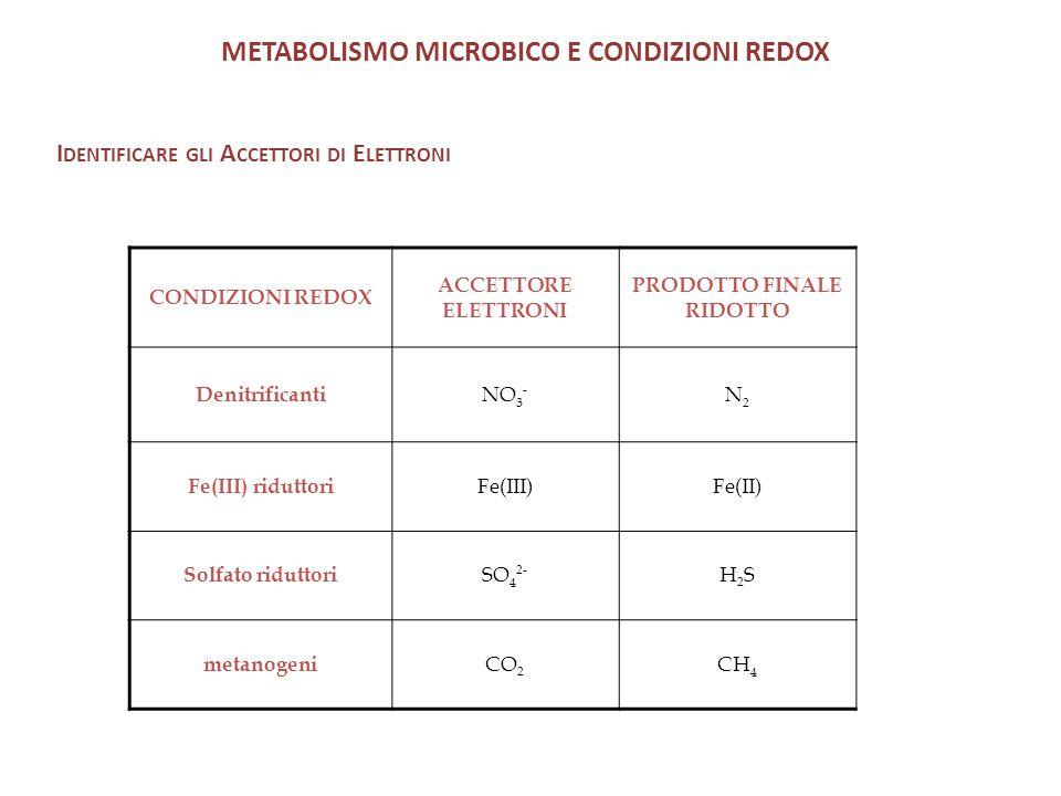 METABOLISMO MICROBICO E CONDIZIONI REDOX I DENTIFICARE GLI A CCETTORI DI E LETTRONI CONDIZIONI REDOX ACCETTORE ELETTRONI PRODOTTO FINALE RIDOTTO Denitrificanti NO 3 - N2N2 Fe(III) riduttori Fe(III)Fe(II) Solfato riduttori SO 4 2- H2SH2S metanogeni CO 2 CH 4
