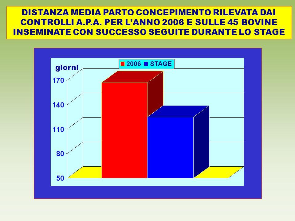 DISTANZA MEDIA PARTO CONCEPIMENTO RILEVATA DAI CONTROLLI A.P.A. PER L'ANNO 2006 E SULLE 45 BOVINE INSEMINATE CON SUCCESSO SEGUITE DURANTE LO STAGE gio