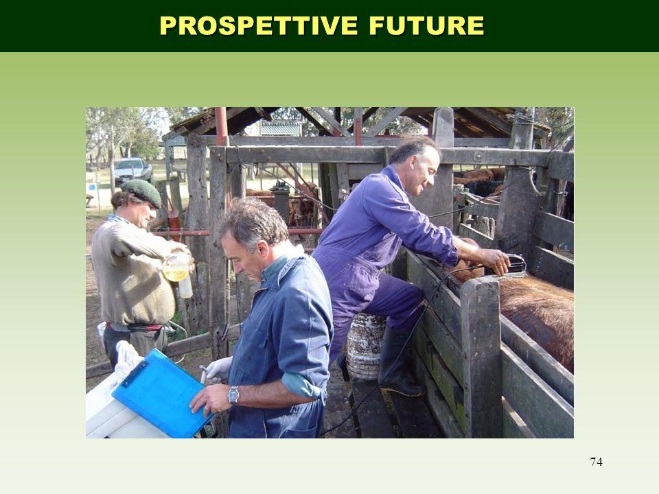 74 PROSPETTIVE FUTURE