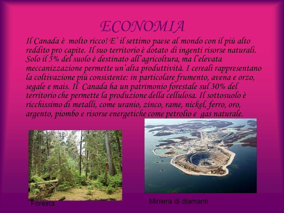 ECONOMIA Il Canada è molto ricco! E' il settimo paese al mondo con il più alto reddito pro capite. Il suo territorio è dotato di ingenti risorse natur