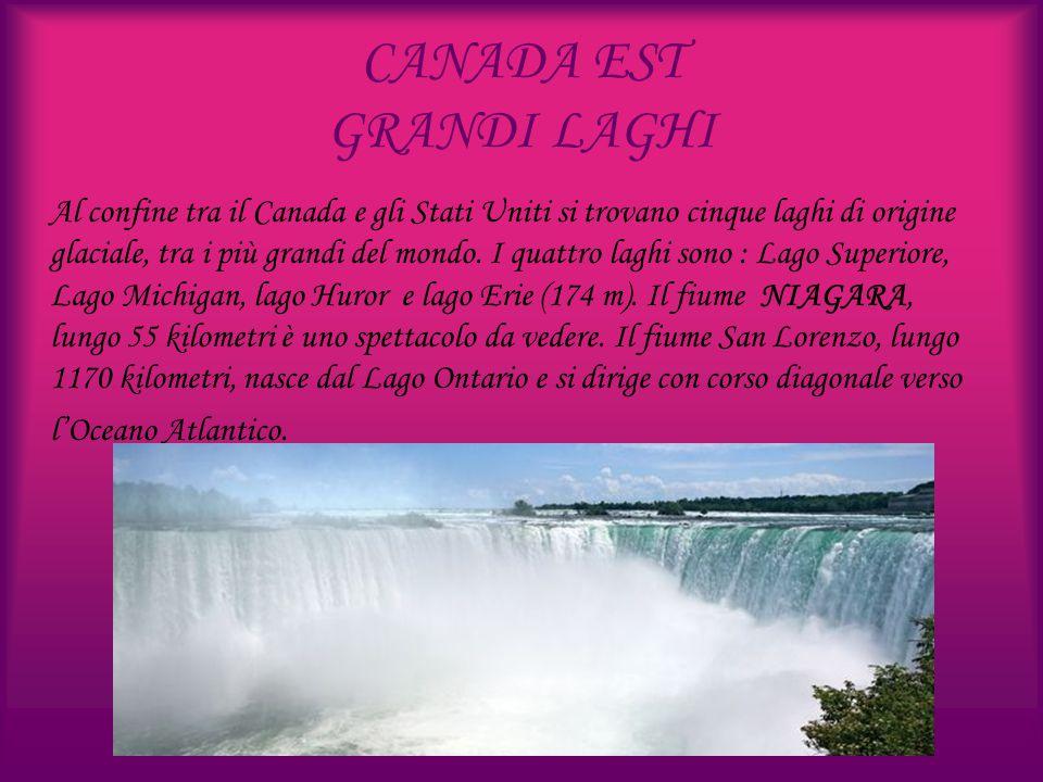 CANADA EST GRANDI LAGHI Al confine tra il Canada e gli Stati Uniti si trovano cinque laghi di origine glaciale, tra i più grandi del mondo. I quattro