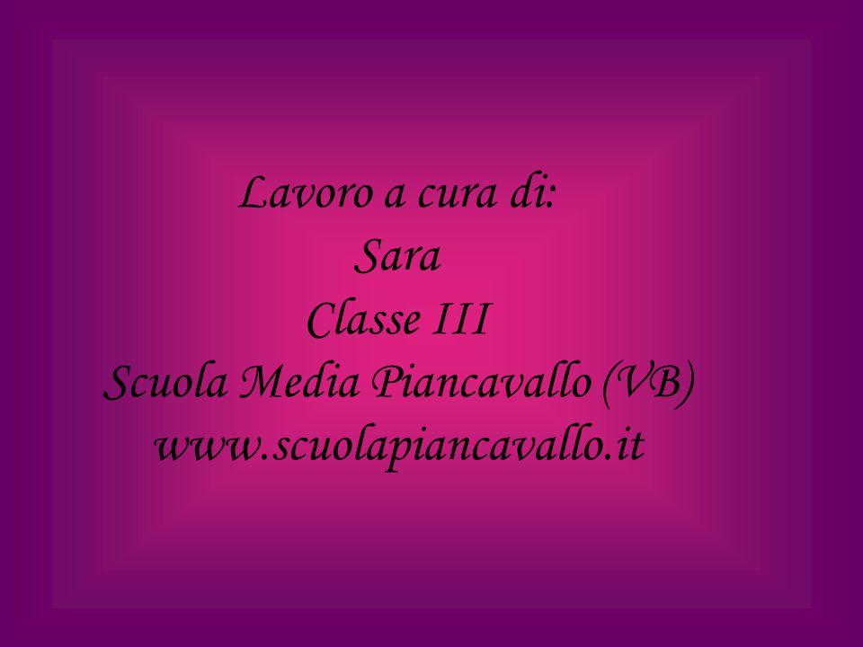 Lavoro a cura di: Sara Classe III Scuola Media Piancavallo (VB) www.scuolapiancavallo.it