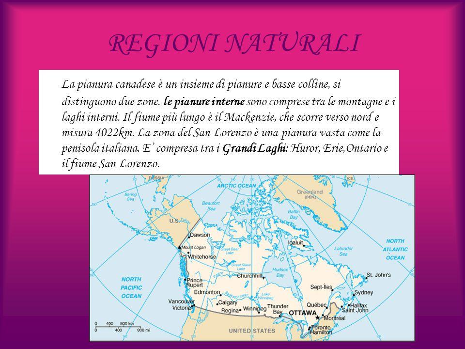 REGIONI NATURALI La pianura canadese è un insieme di pianure e basse colline, si distinguono due zone. le pianure interne sono comprese tra le montagn