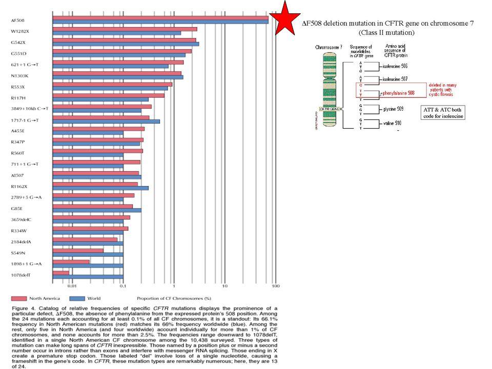 Standards and Guidelines for CFTR Mutation Testing American College of Medical Genetics Genetics in Medicine 2002; 4(5):379-391 INDICAZIONI AL TEST test diagnostico, possibile diagnosi FC test diagnostico, definire una diagnosi FC test diagnostico, neonati con ileo da meconio test diagnostico, maschi con CBAVD Test per il portatore, partner di soggetti con storia familiare positiva Test per il portatore, parner di maschi con CBAVB Test per il portatore, soggetti con storia familiare positiva Test per il portatore, donatori di gameti Diagnosi preimpianto test per diagnosi prenatale, coppie di portatori sani con un rischio 1/4 test per diagnosi prenatale, iperecogenicità intestinale nel II trimestre di gravidanza Screening neonatale