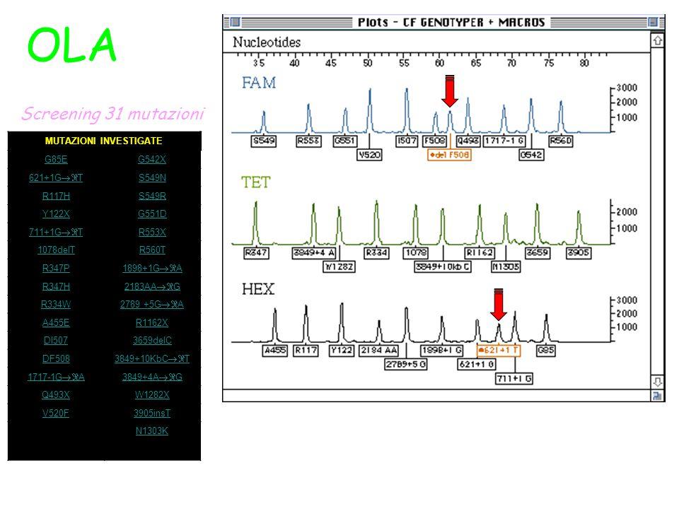 OLA Screening 31 mutazioni MUTAZIONI INVESTIGATE G85EG542X 621+1G  T S549N R117HS549R Y122XG551D 711+1G  T R553X 1078delTR560T R347P 1898+1G  A