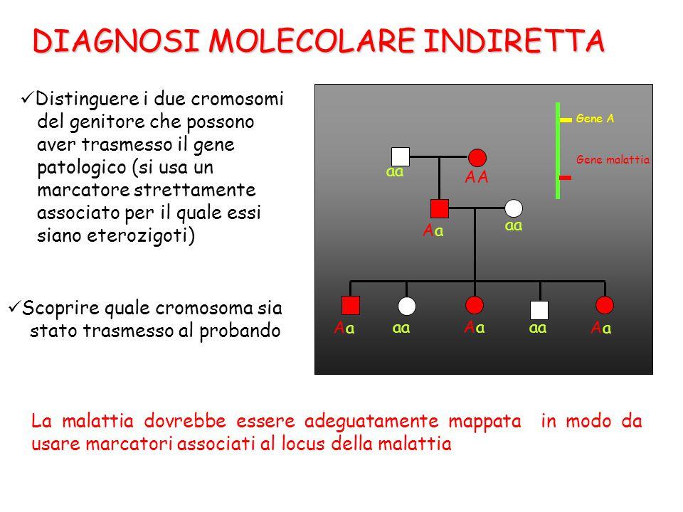 DIAGNOSI MOLECOLARE INDIRETTA Distinguere i due cromosomi del genitore che possono aver trasmesso il gene patologico (si usa un marcatore strettamente