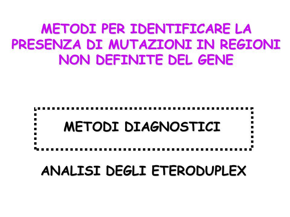 METODI PER IDENTIFICARE LA PRESENZA DI MUTAZIONI IN REGIONI NON DEFINITE DEL GENE METODI DIAGNOSTICI ANALISI DEGLI ETERODUPLEX