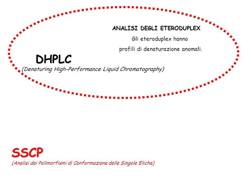 DHPLC DHPLC (Denaturing High-Performance Liquid Chromatography)SSCP (Analisi dei Polimorfismi di Conformazione delle Singole Eliche) ANALISI DEGLI ETE