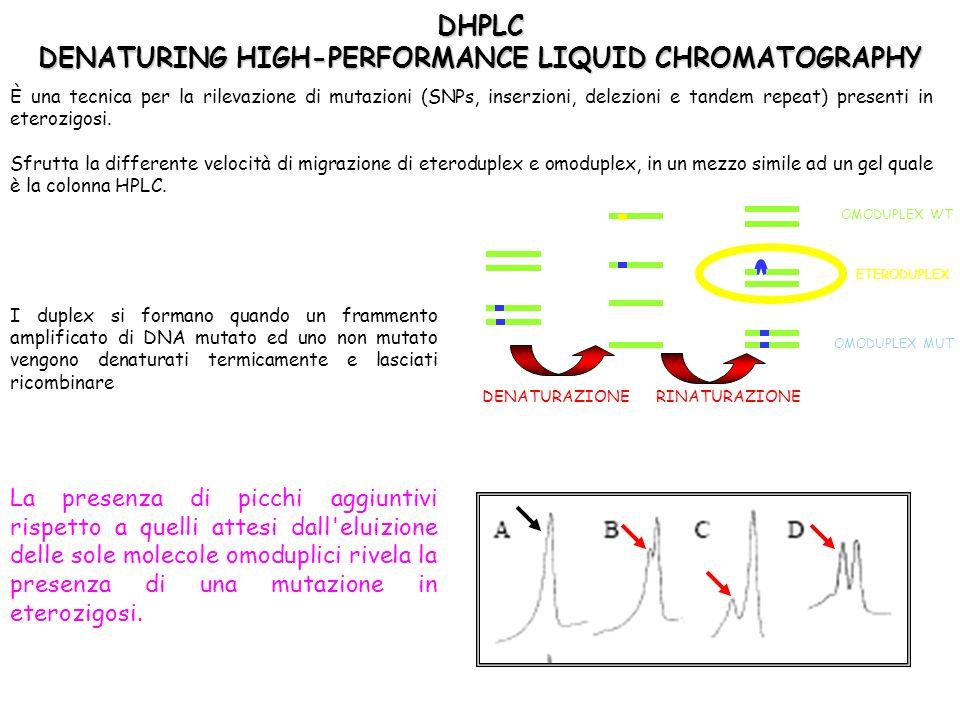 È una tecnica per la rilevazione di mutazioni (SNPs, inserzioni, delezioni e tandem repeat) presenti in eterozigosi. Sfrutta la differente velocità di
