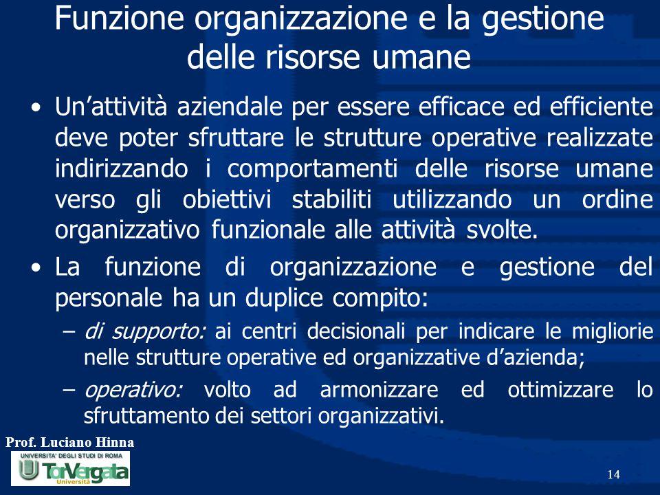 Prof. Luciano Hinna 14 Funzione organizzazione e la gestione delle risorse umane Un'attività aziendale per essere efficace ed efficiente deve poter sf