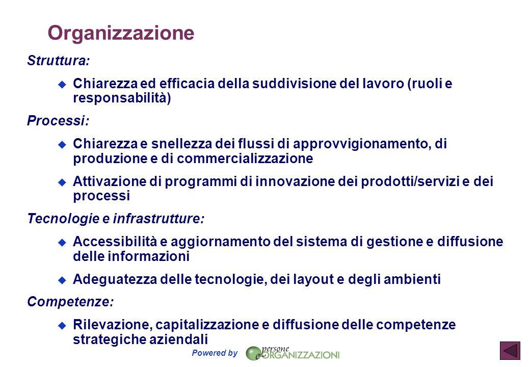 Powered by Organizzazione Struttura:  Chiarezza ed efficacia della suddivisione del lavoro (ruoli e responsabilità) Processi:  Chiarezza e snellezza