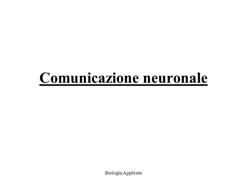 Biologia Applicata Sinapsi chimiche La sinapsi chimica più studiata è la giunzione neuromuscolare.