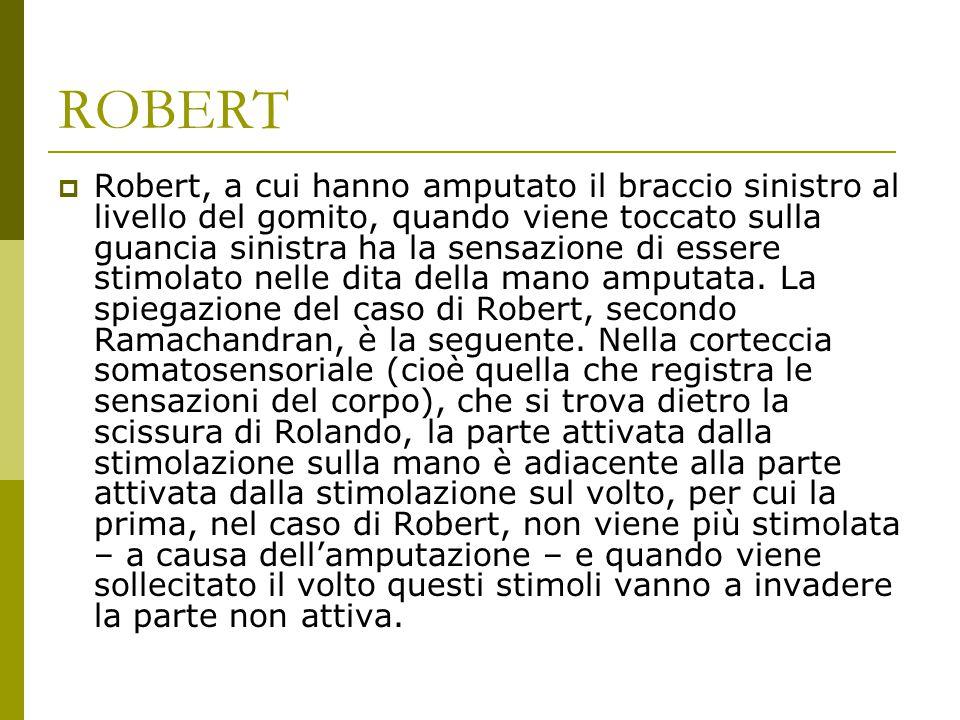 ROBERT  Robert, a cui hanno amputato il braccio sinistro al livello del gomito, quando viene toccato sulla guancia sinistra ha la sensazione di esser