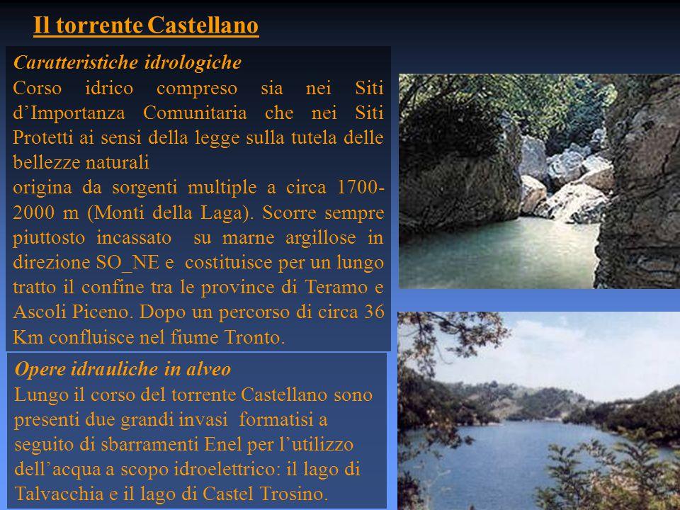 Il torrente Castellano Caratteristiche idrologiche Corso idrico compreso sia nei Siti d'Importanza Comunitaria che nei Siti Protetti ai sensi della legge sulla tutela delle bellezze naturali origina da sorgenti multiple a circa 1700- 2000 m (Monti della Laga).