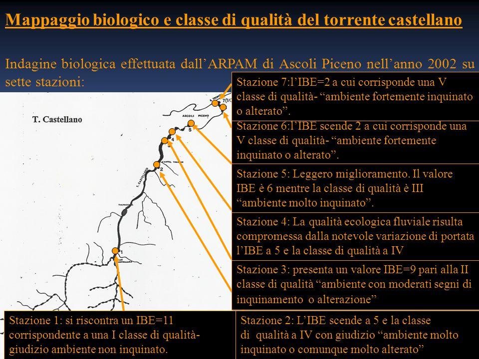 Mappaggio biologico e classe di qualità del torrente castellano Indagine biologica effettuata dall'ARPAM di Ascoli Piceno nell'anno 2002 su sette stazioni: Stazione 1: si riscontra un IBE=11 corrispondente a una I classe di qualità- giudizio ambiente non inquinato.