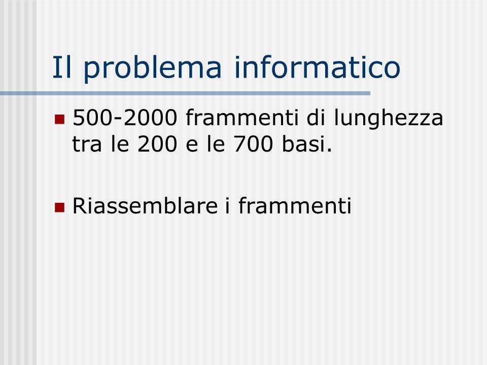 Il problema informatico 500-2000 frammenti di lunghezza tra le 200 e le 700 basi. Riassemblare i frammenti