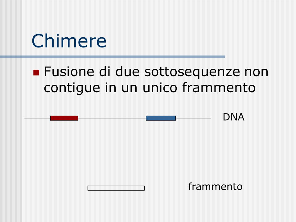 Chimere Fusione di due sottosequenze non contigue in un unico frammento DNA frammento
